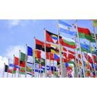 Pasaulio valstybių vėliavos